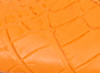 Orangecroc synthetic